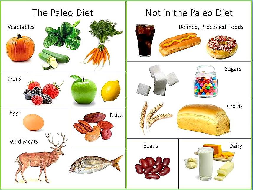 wat wel en wat niet bij het paleo dieet