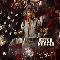 chuck norris in actie